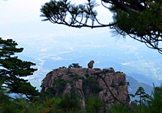 Mt. Huangshan Hiking Exploratio