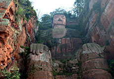 2 Days for local Chengdu and Leshan Giant Buddha Tours