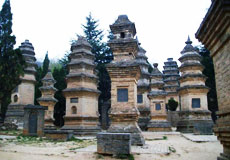Shaolin and White Horse Temple One day tour