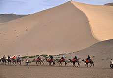 Camel Riding in Silk Road
